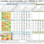 Fiche variétés 2017
